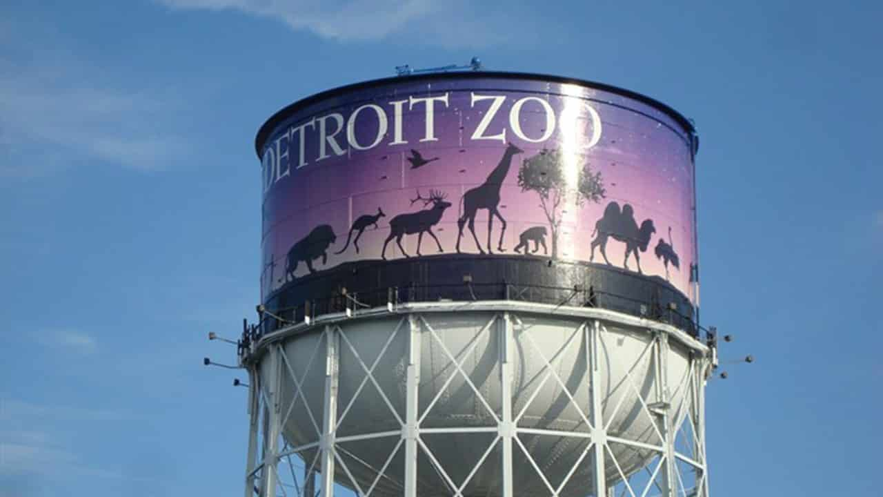Pure Michigan Live Detroit Zoo Archive From July 17 2015 Utr Michigan